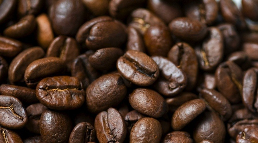 Kaldi Coffee Roasted Coffee
