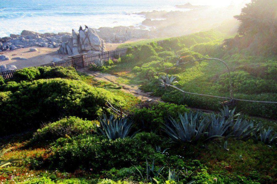 Neruda Homes Isla Beach