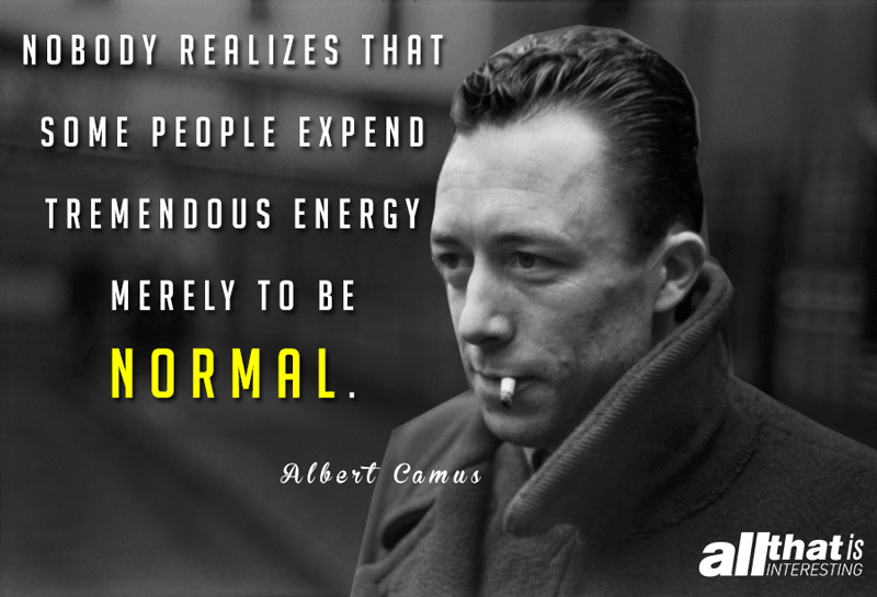 Quotes About Life Being Normal