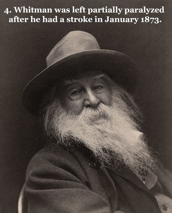 Great Poet Whitman