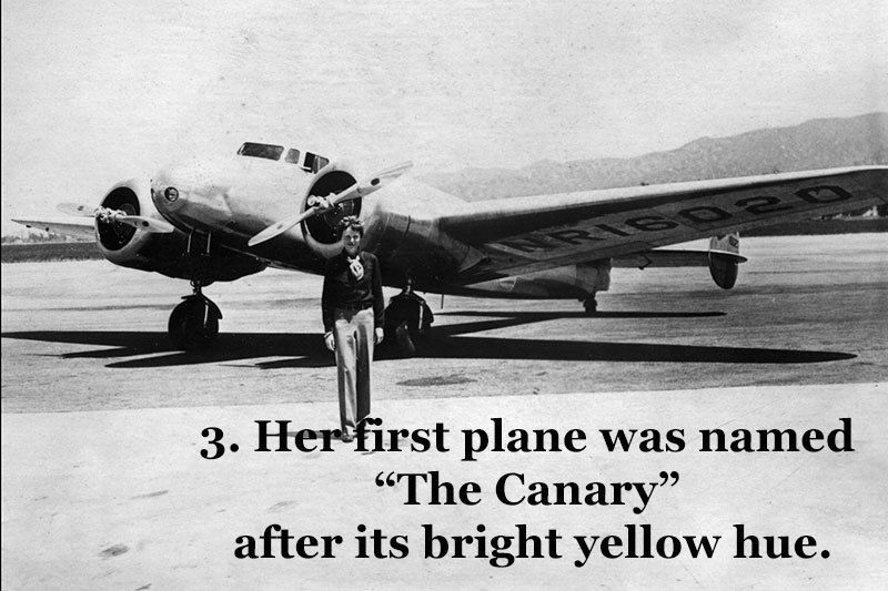 The Canary Earhart Plane