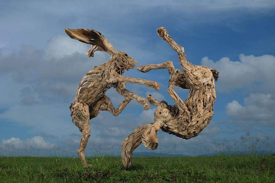 Driftwood Rabbits Sculptures Fighting