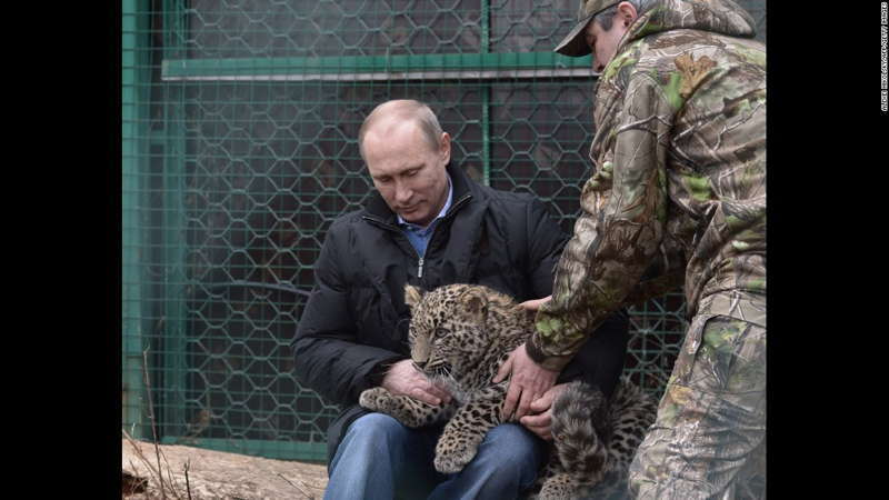With Leopard Cub