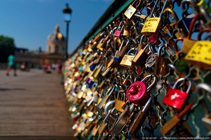 paris love locks close up