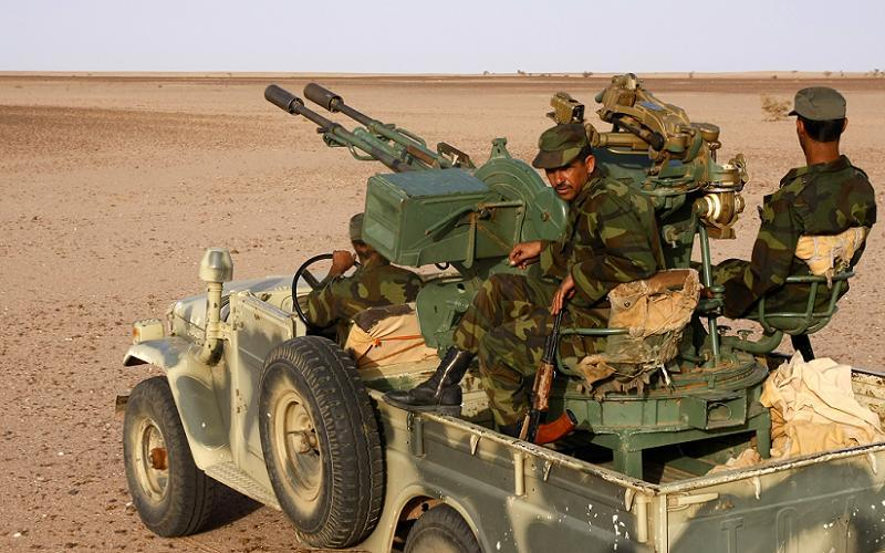 Polisario Technical