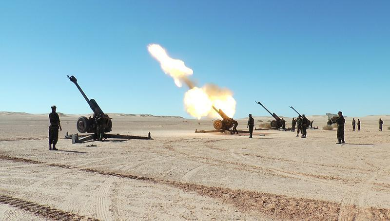 Polisario Artillery