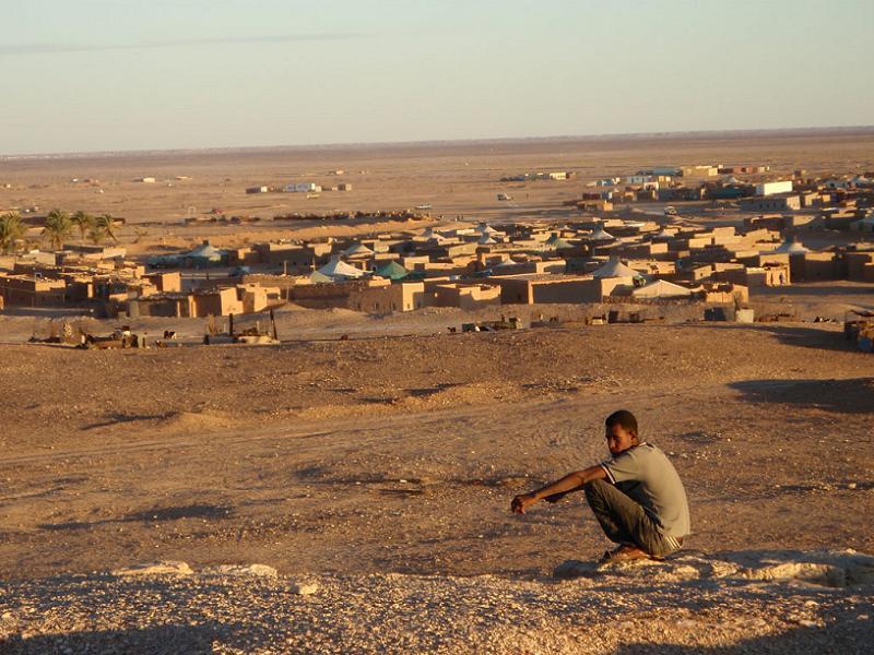 Polisario Boy