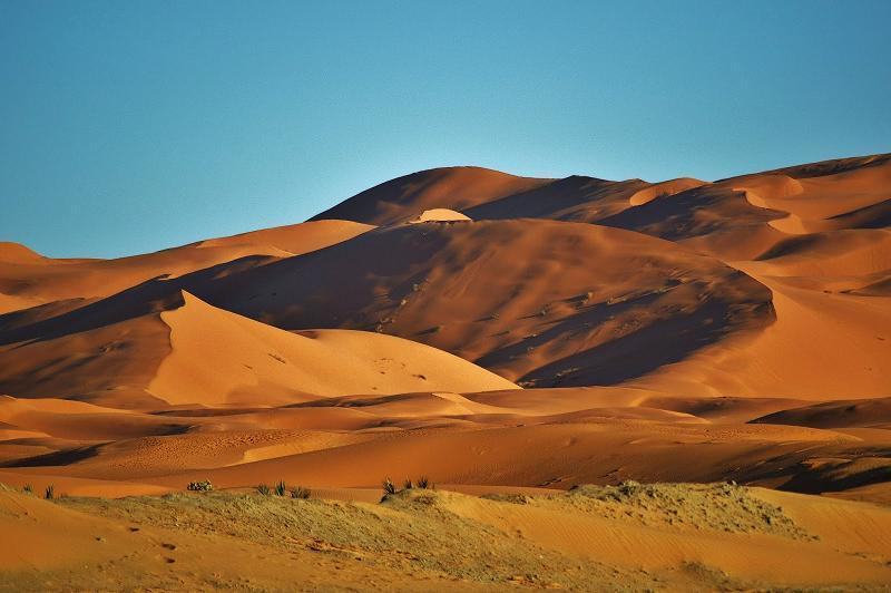 Polisario Sand Dunes