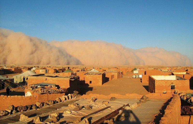 Polisario Haboob
