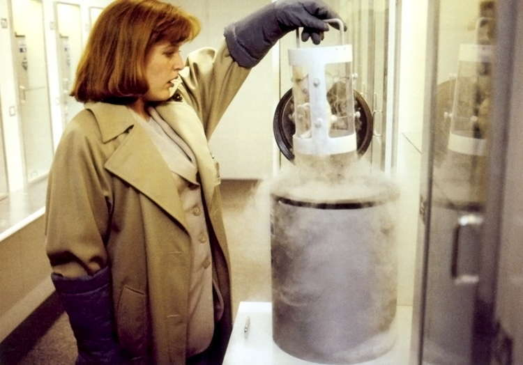 Real X Files Erlenmeyer