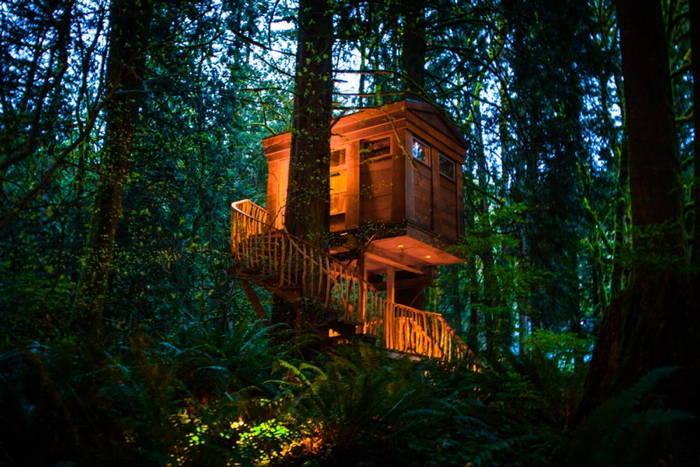 TreeHouse At Dusk