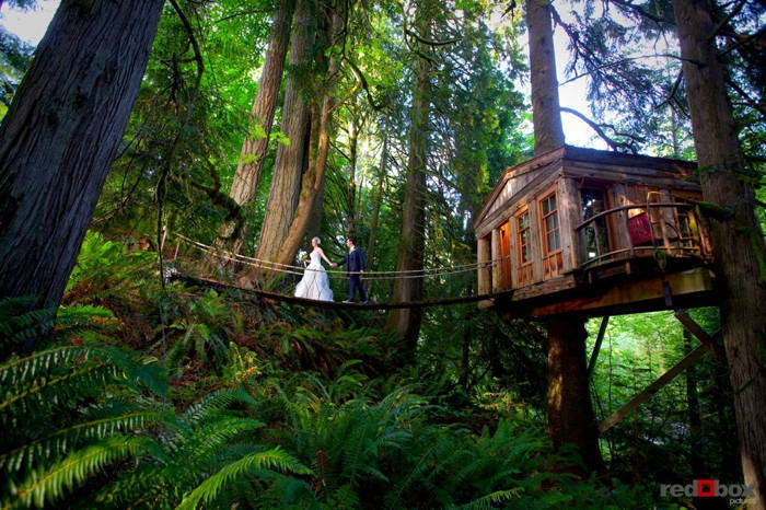 TreeHouse Point Wedding Bridge