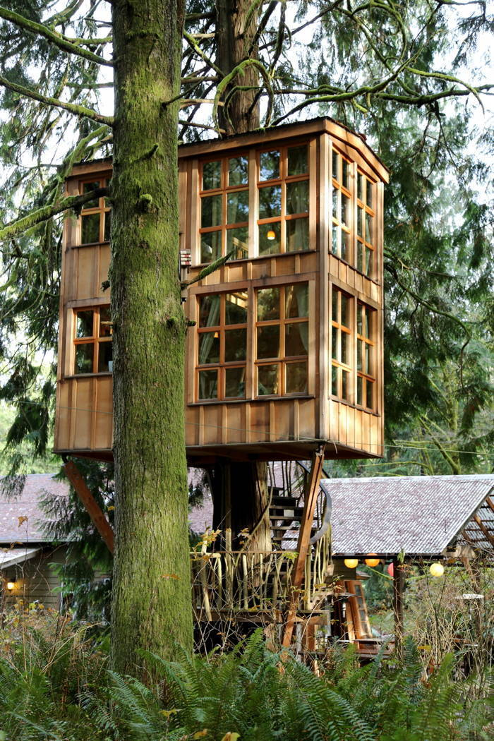 TreeHouse Point Windows