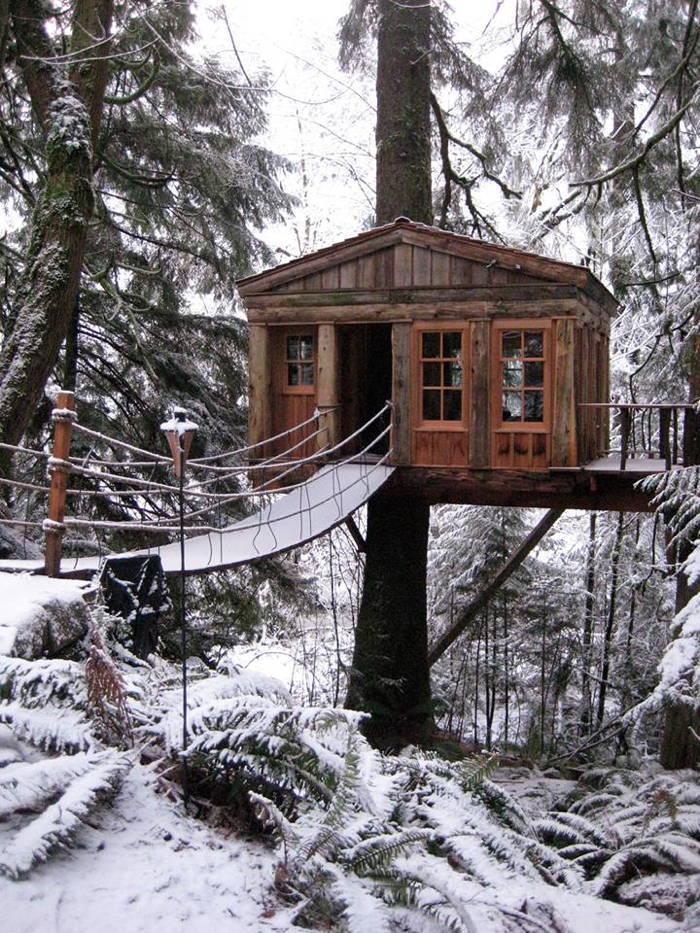 Snowy Treehouse