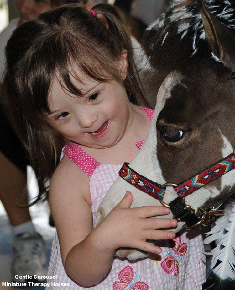 Miniature Therapy Horses Girl