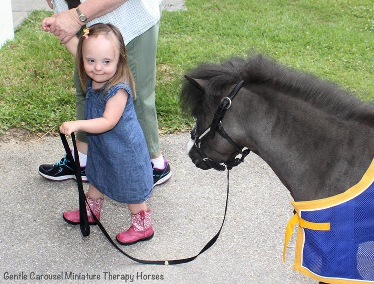 Therapy Horse Pink Boots