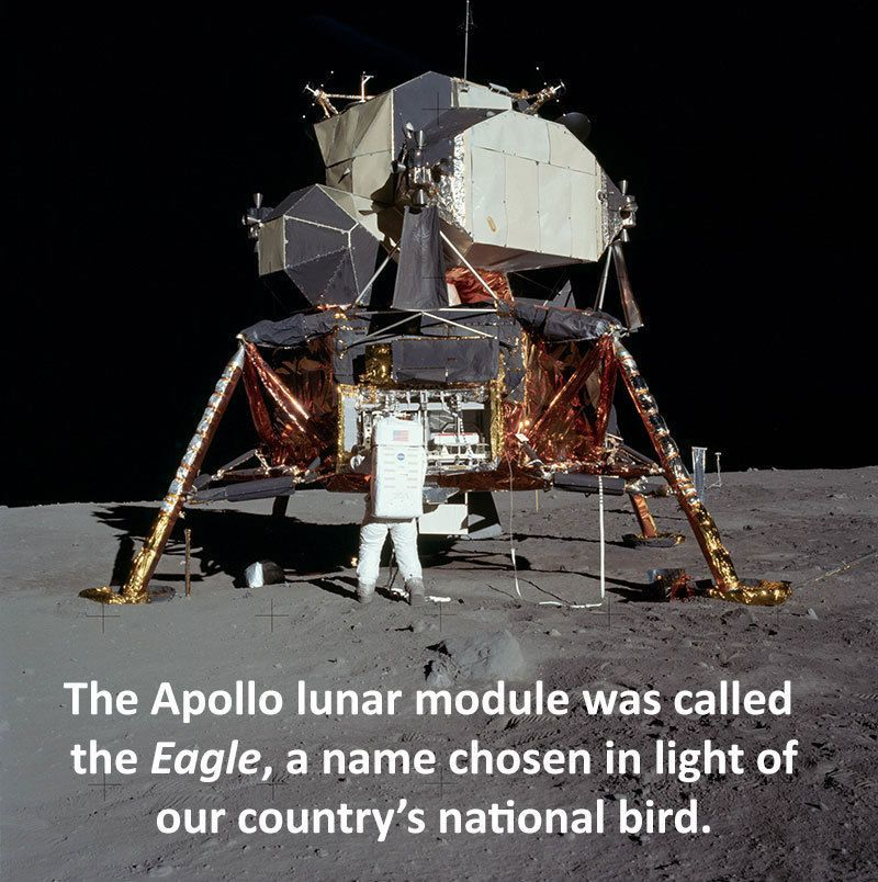 Apollo 11 Lunar