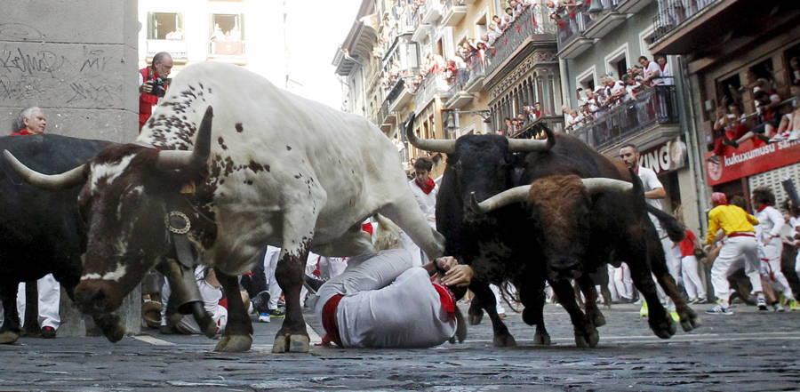 Bulls Trampling Man Pamplona