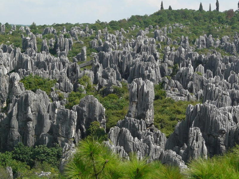 Chinese Stone Forest Landscape