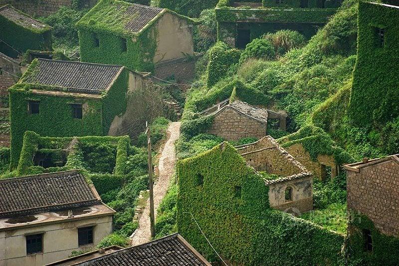 Greenery of Gouqi Island