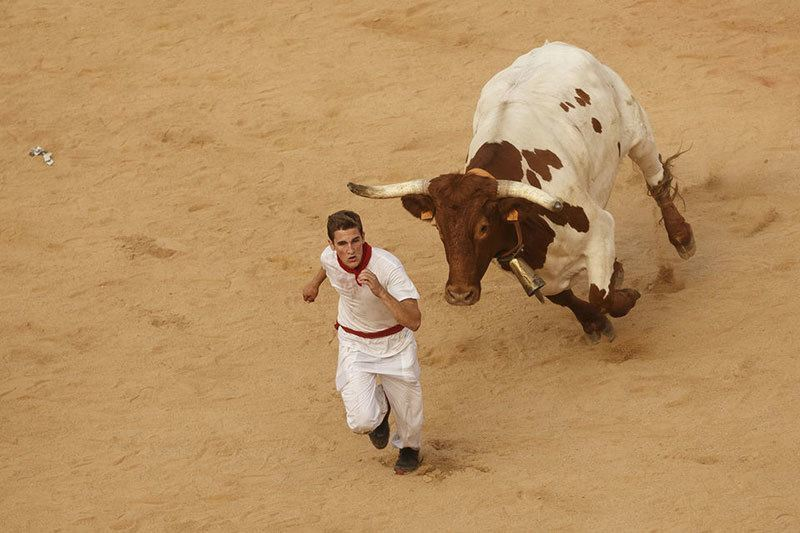Pictures Of The Running Of The Bulls
