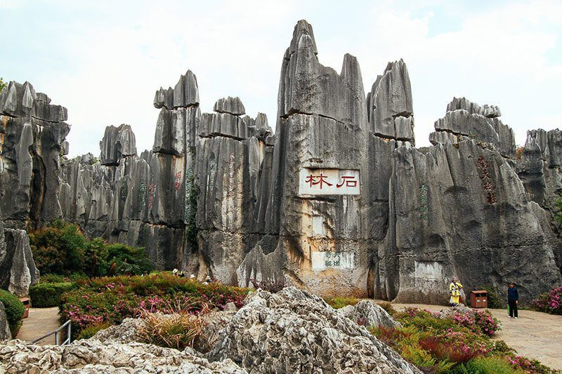 Stone Forest Entrance