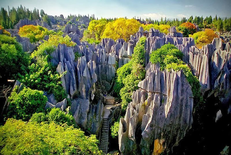 Chinese Stone Forest Picture