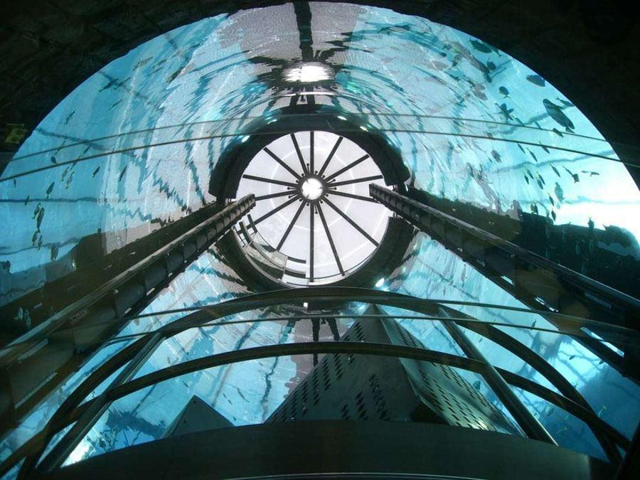 Cool Aquarium Hotel