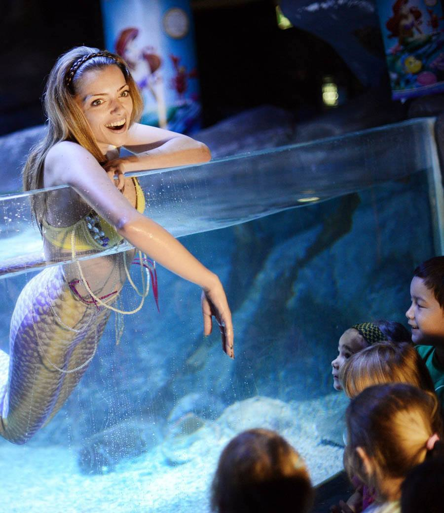 Anne Menden As A Mermaid