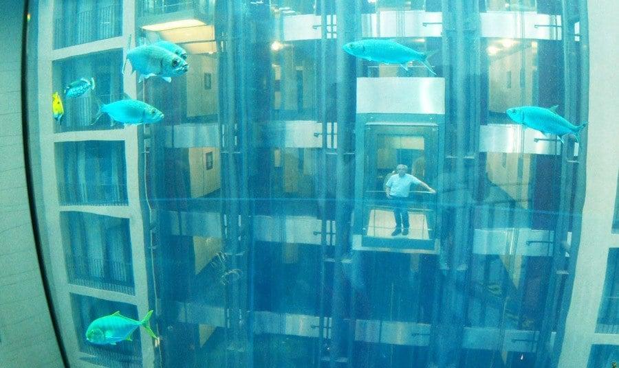 Pictures Of Berlin's AquaDom Aquarium