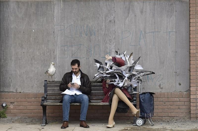 Banksy Dismaland Birds