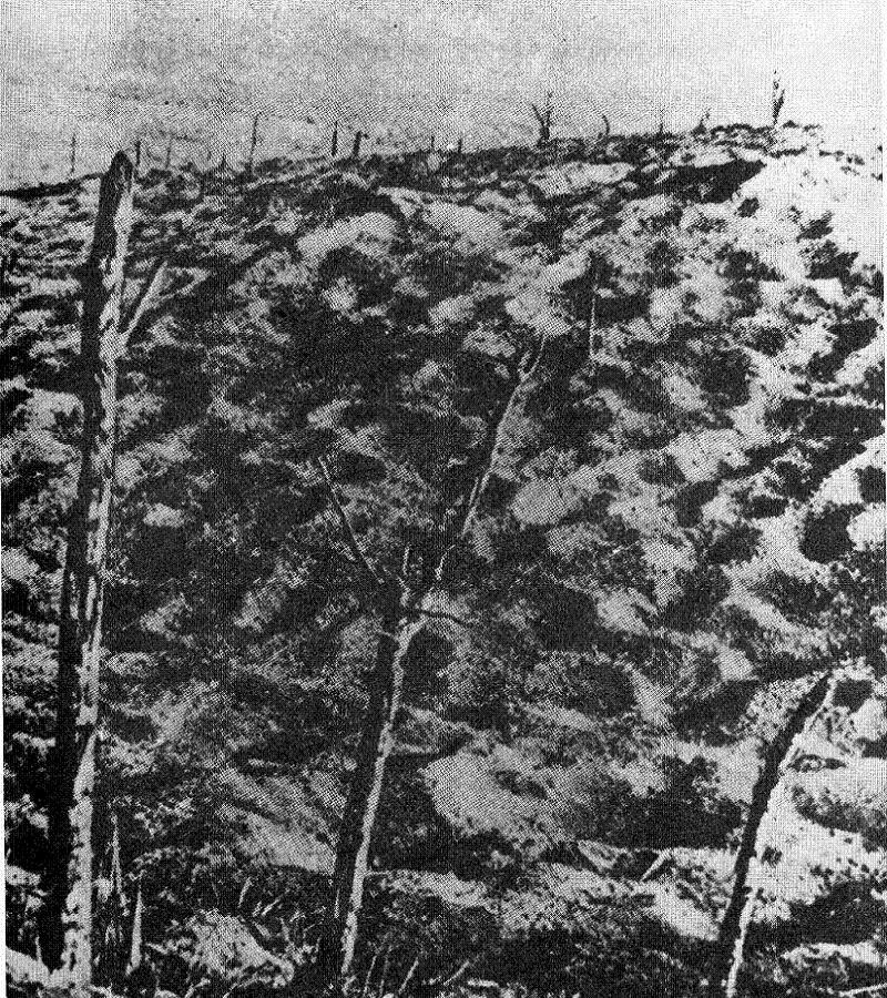 Historic Battlefields Verdun Moonscape