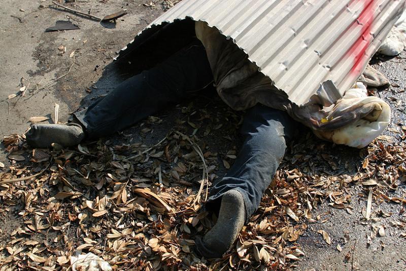 Hurricane Katrina Dead Covered