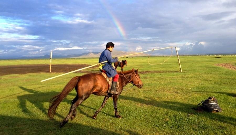 Mongolia Nomads Rainbow Horse