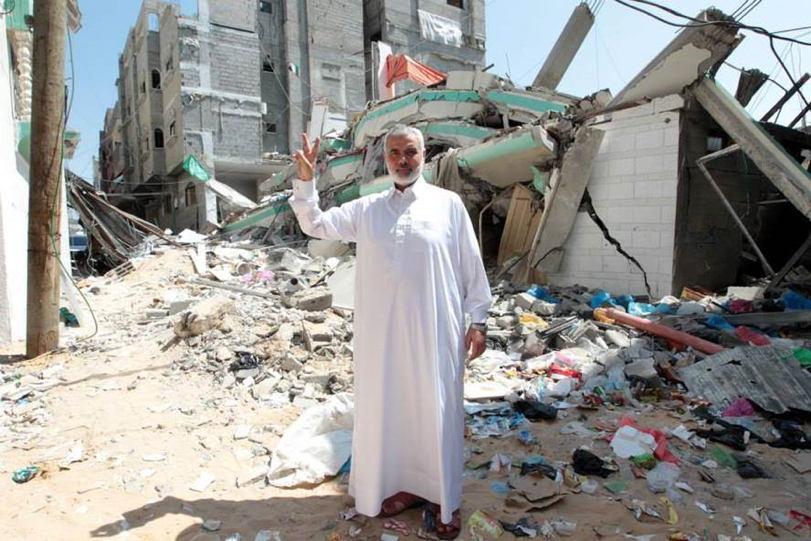 Occupied Palestine Peace