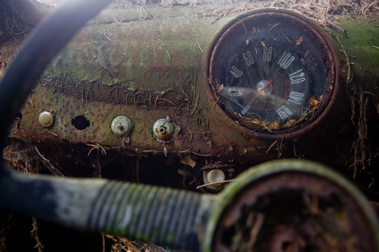 Reclaimed By Nature Dashboard