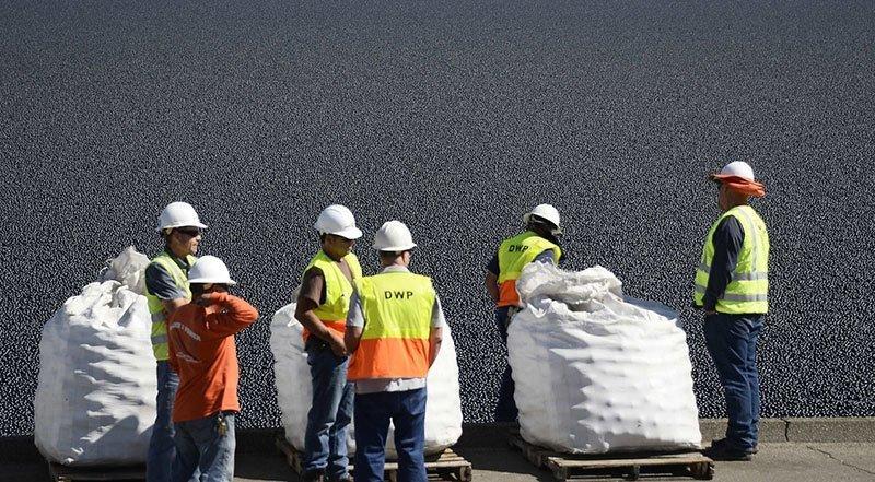 California Municipal Workers