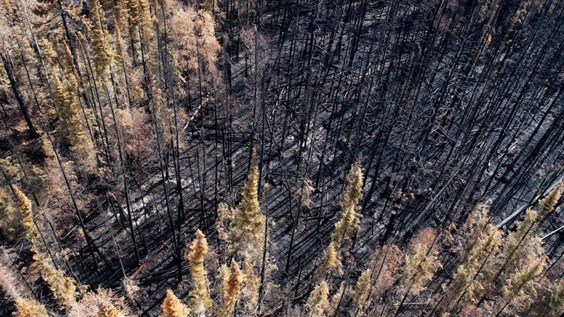 Summer Weather 2015 Northern Canada Wildfire