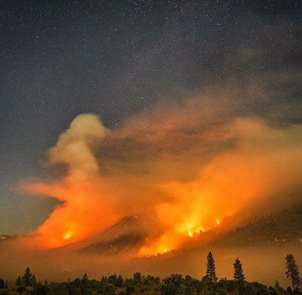 Terra Flamma Willow Fire