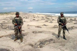 Photo Of The Day: Marines Set To Prevent Turtle Eggs' Poaching