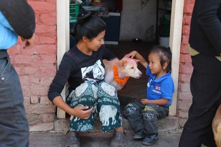 Dog Festival Nepal Kid