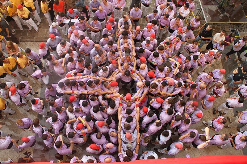 Castellers Competition Purple