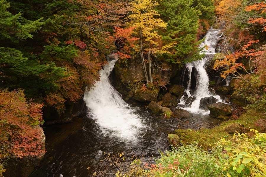Fall Photo Roundup Nikko Japan