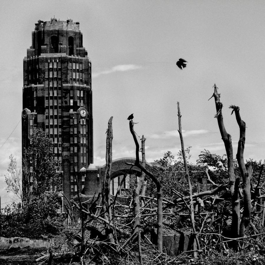 Abandoned Tower Dead Trees