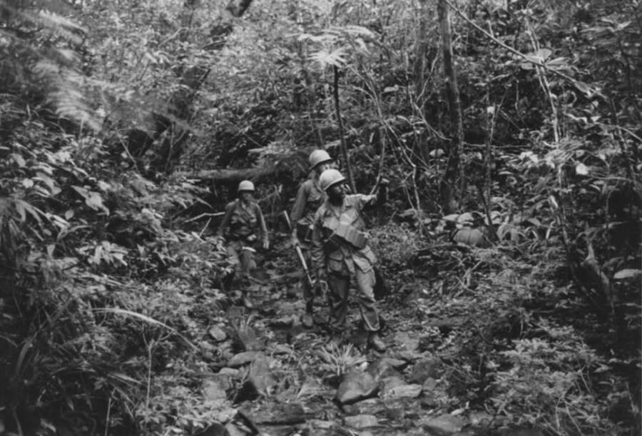American Troops In The Vietnam Jungle