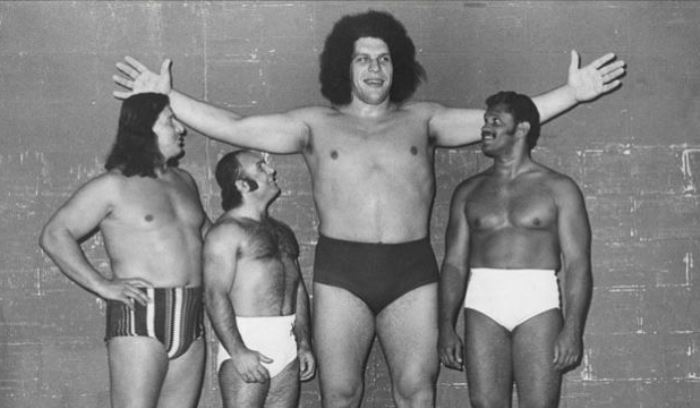 Andre The Giant Next To Wrestlers