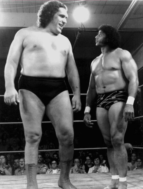 Andre The Giant Photographs