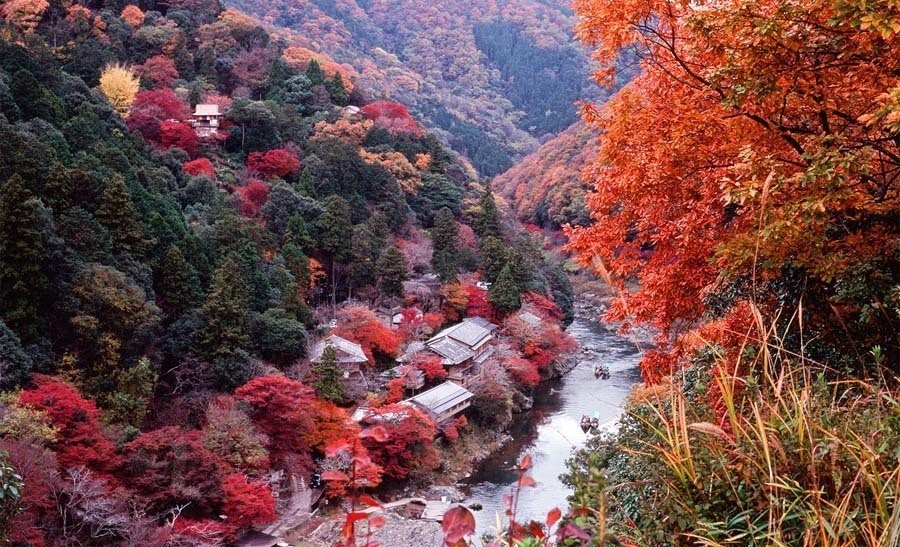 Photographs Of Kyoto