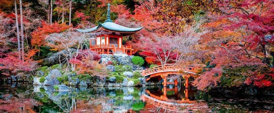 Colorful Kansai Japan Reflecting