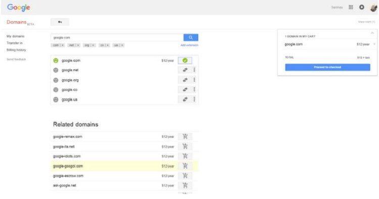 Google Domain Purchase Screenshot